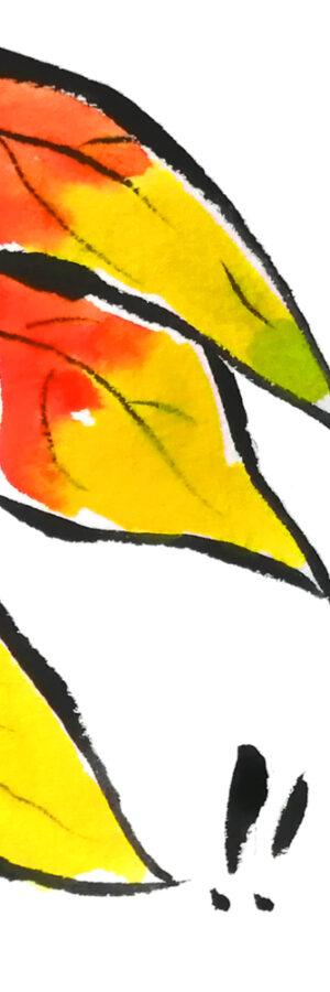【無料動画】簡単なほおずきの描き方【暑中見舞い・残暑見舞い】
