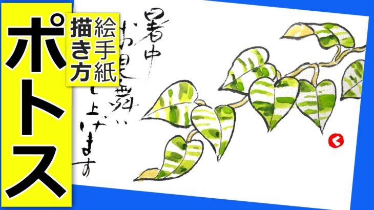 ポトスの簡単な描き方│観葉植物・花の絵手紙イラスト