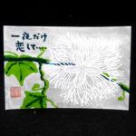 絵手紙・烏瓜の夜咲く花