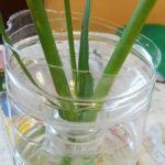 水がこぼれない花瓶 作り方