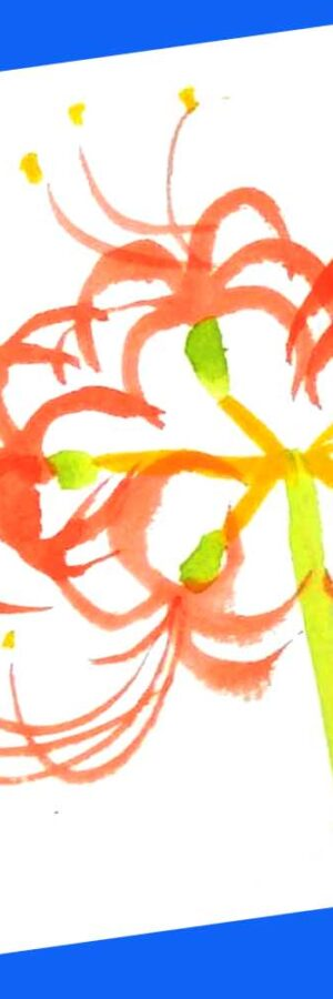 彼岸花のとても簡単な描き方 無料動画│秋のお彼岸│花の描き方│絵手紙イラスト│秋分の日│初心者│9月・秋の花【曼殊沙華】