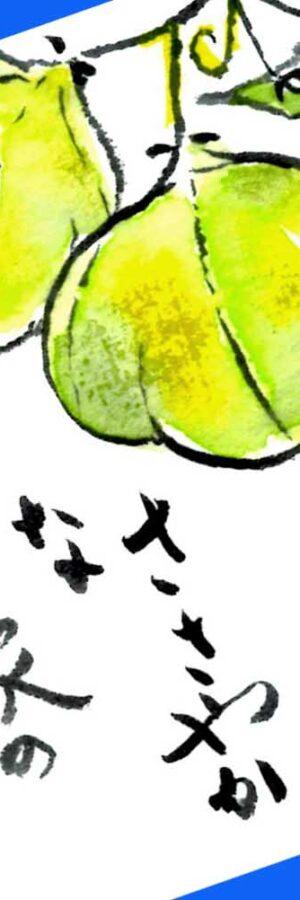 風船かずらの描き方 無料動画│ガーデニングの絵手紙スケッチ│7月・8月・9月・10月・夏・秋
