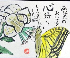 【絵手紙】むべの実、蝶々、夏祭りと猫、ケイトウ、白粉花、蝉、茄子、ぶなしめじ