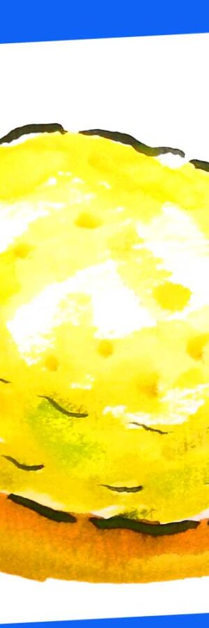 レモンの簡単な描き方 無料動画│秋・冬・春の果物や野菜の描き方│絵手紙イラストスケッチ│10月・11月・12月・1月・2月・3月│初心者