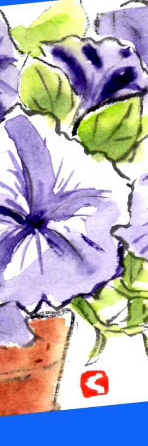 ペチュニアの花の描き方🌺無料動画│絵手紙スケッチ│春・夏・秋・3月・4月・5月・6月・7月・8月・9月・10月・11月の花