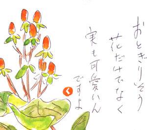 【絵手紙】ヒペリカム・おとぎりそう、段菊、ひまわり、美女柳、楓、馬鈴薯、折り紙の紫陽花、なすび│初夏~夏の花