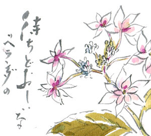 紫陽花の絵手紙いろいろ ツバメなど