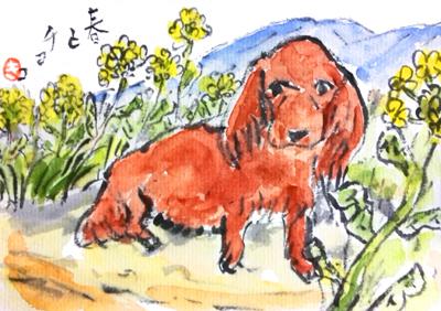 ペット(犬)の絵手紙の描き方🐶│季節や犬種ごとの作品集│絵手紙イラスト