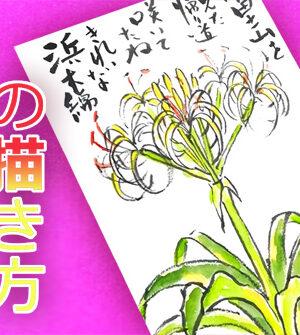 【はまゆう】浜木綿の描き方 絵手紙オンライン無料動画 7月・8月・9月・夏【花の描き方】