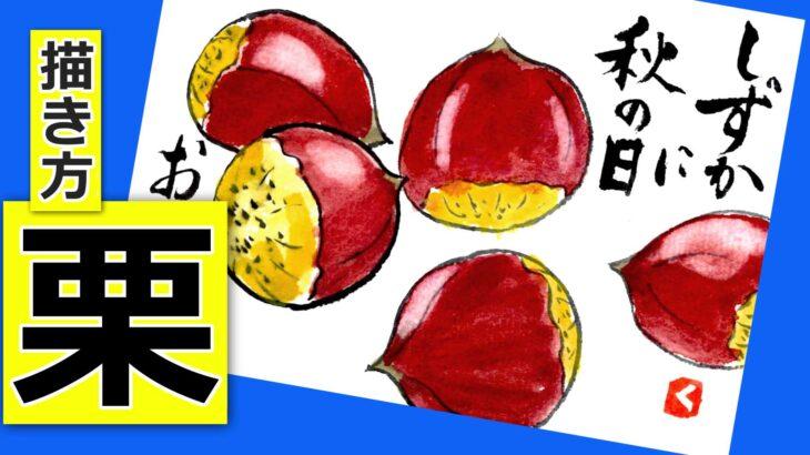 栗の簡単な描き方🌰無料動画│秋の野菜・果物の絵手紙イラスト│ガーデニングの絵手紙スケッチ│初心者│9月・10月・11月・秋