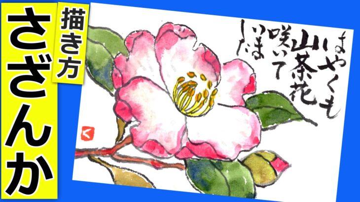 山茶花の花の描き方🌸無料動画│ガーデニングの絵手紙スケッチ│初心者│10月・11月・12月・1月・秋・冬【さざんか】