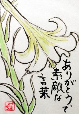 【絵手紙】黄蜀葵、ひよ子、姫ひまわり、トルコ桔梗、百合