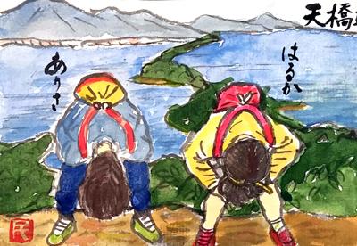 【絵手紙】イチジク、天橋立、秋の果物、秋の野菜、小紫の実、食欲の秋、ジンジャー、灯台草、彼岸花ほか
