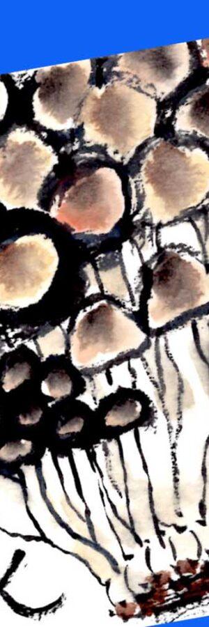 ぶなしめじの描き方 無料動画│野菜│8月・9月・10月・11月・晩夏・秋の絵手紙