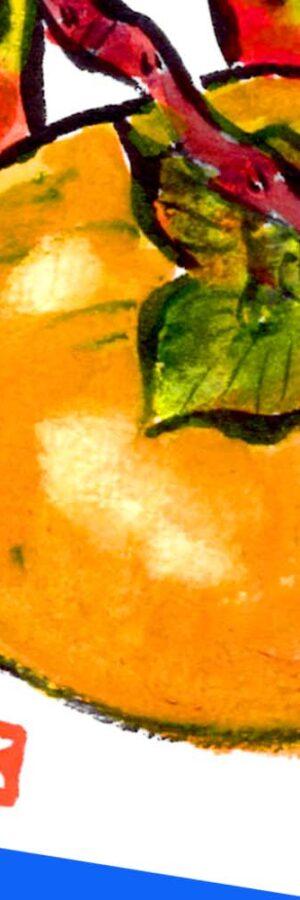 柿の描き方 無料動画│秋の果物絵手紙スケッチ│ガーデニングの絵手紙イラスト│初心者│9月・10月・11月・秋