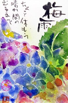 絵手紙 紫陽花、ひまわり