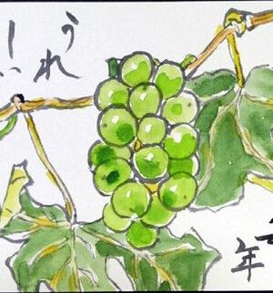【夏の果物】葡萄、なす、キュウリ、南瓜、鬼百合、かまきり、向日葵、トマト、花火、貝殻【夏野菜】