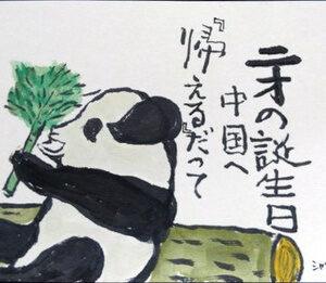 【絵手紙】パンダ、ルドベキア・タカオ│夏の絵手紙