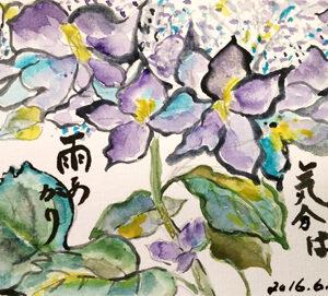 絵手紙 紫陽花、ひまわり畑