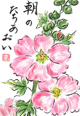 【絵手紙】立葵、海【夏、初夏】