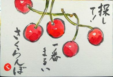 【絵手紙】とうもろこし、枇杷、さくらんぼ【夏野菜】